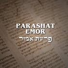 Parashat Emor - 2020 (La Blasfemia y la Justicia)