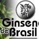 El Ángel de tu Salud - GINGSENG DE BRASIL