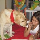 Menudo Castillo 378, conociendo el proyecto Perros y Letras