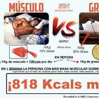 ¿Ganar músculo para perder grasa? - Sergio Martínez