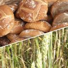 Atlas Etnográfico de Vasconia: Elaboración de la hornada de pan