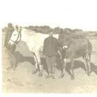 65. El Servicio de Bagajes y Alojamientos y sus exenciones. España, siglo XIX