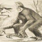Ni laica ni científica. La enseñanza de la Teoría de la Evolución en la escuela - Mónica Contreras