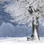 Cando era tempo de inverno