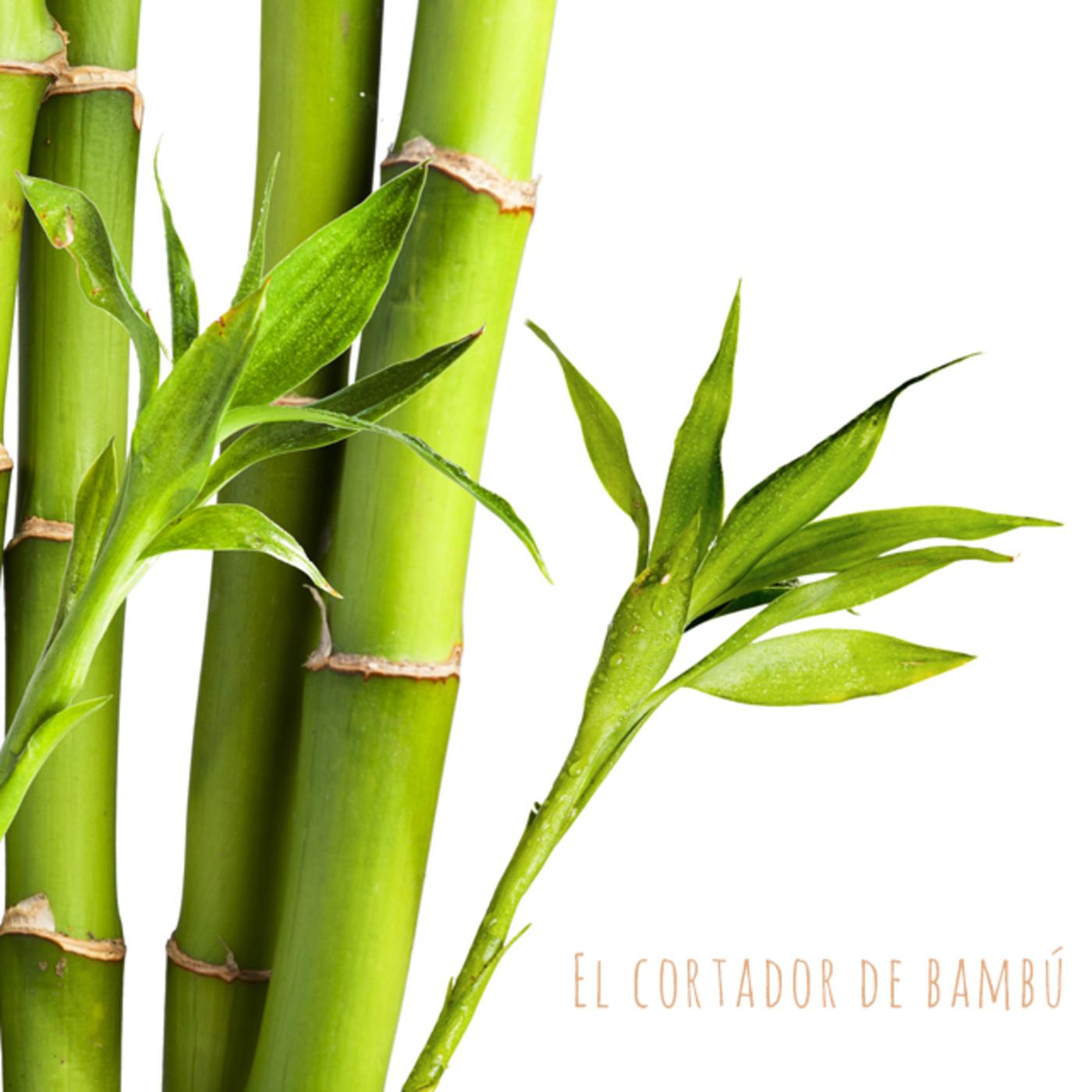 El cortador de bambú. Cuento tradicional japonés. Anónimo
