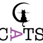 Rueda de Prensa del Comité de Apoyo a las Trabajadoras del Sexo (CATS) en El Cabanyal, 29 julio 2019