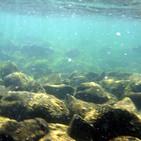 Rocas del Mar del Norte del Reino Unido almacenan Energía Renovable