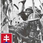 Ndg 46 Eslovaquia, Aliado fiel del Eje. WW2
