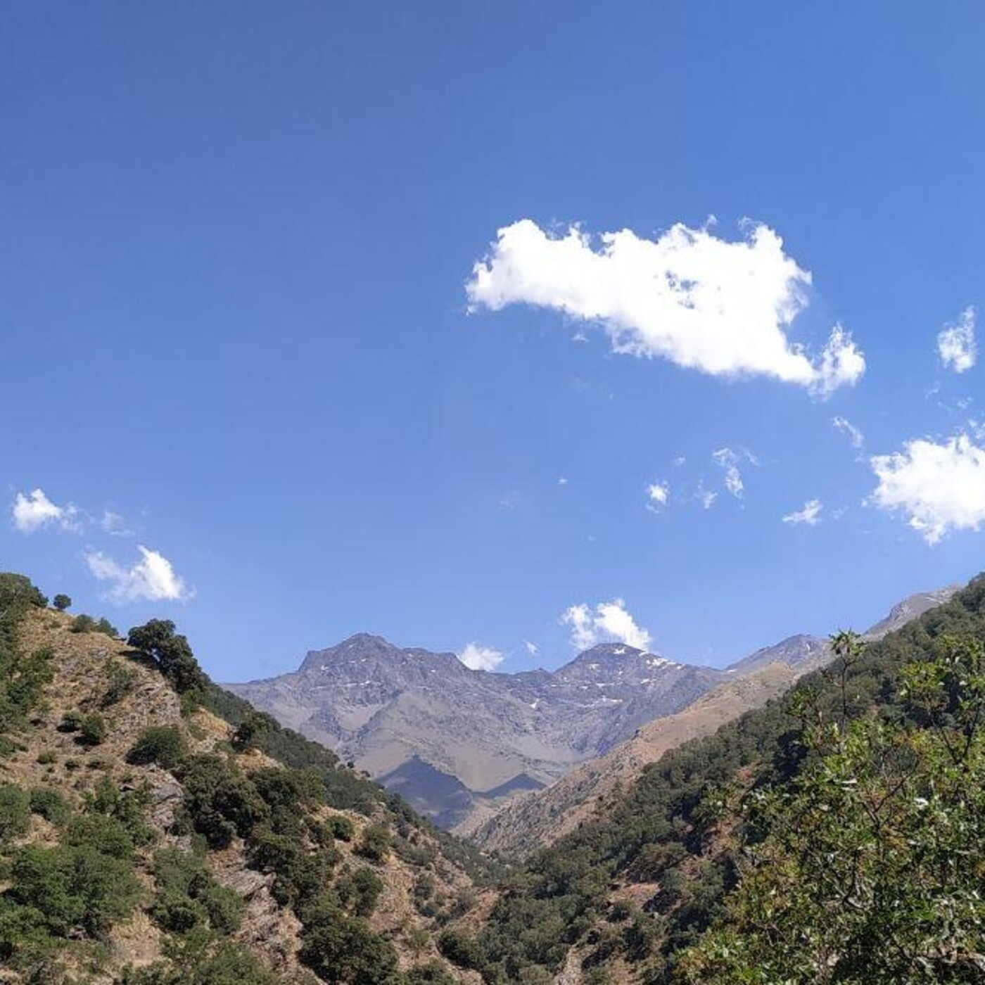 41.- Mochileros en la Vereda de la Estrella y recogiendo cable (en Sierra Nevada).