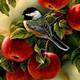 Agradecimiento y fructificación (y etapa post-ovulación)