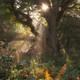Practica meditativa paseo por el bosque (komorebi)