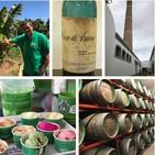 Arehucas y El Canario, productos premium grancanarios