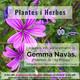 #12 QD amb Herbes de l'alt Pirineu, la Carme i en Pedro
