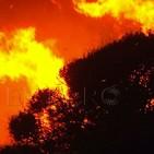 Los incendios devastan la Comunidad de Madrid