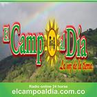 eL CaMPo aL Dia sab 25 Mayo 2019