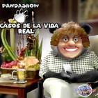 panda show - la despechada busca venganza