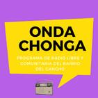 Onda Chonga - Programa Zero