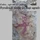 CODEX... más allá del misterio 2x30: Peyrolles. El menhir del linaje sagrado · Templarios y Rennes Le Chateau
