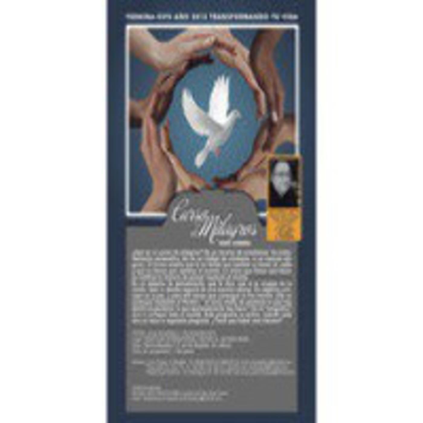 Trabajando Un Curso de Milagros www.1cursodemilagros.wordpress.com