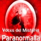 """Voces del Misterio 15/08/14 - Especial 09 de Verano - 'Misterios de la Historia y la Arqueología"""" con Luis Mariano Fdez."""