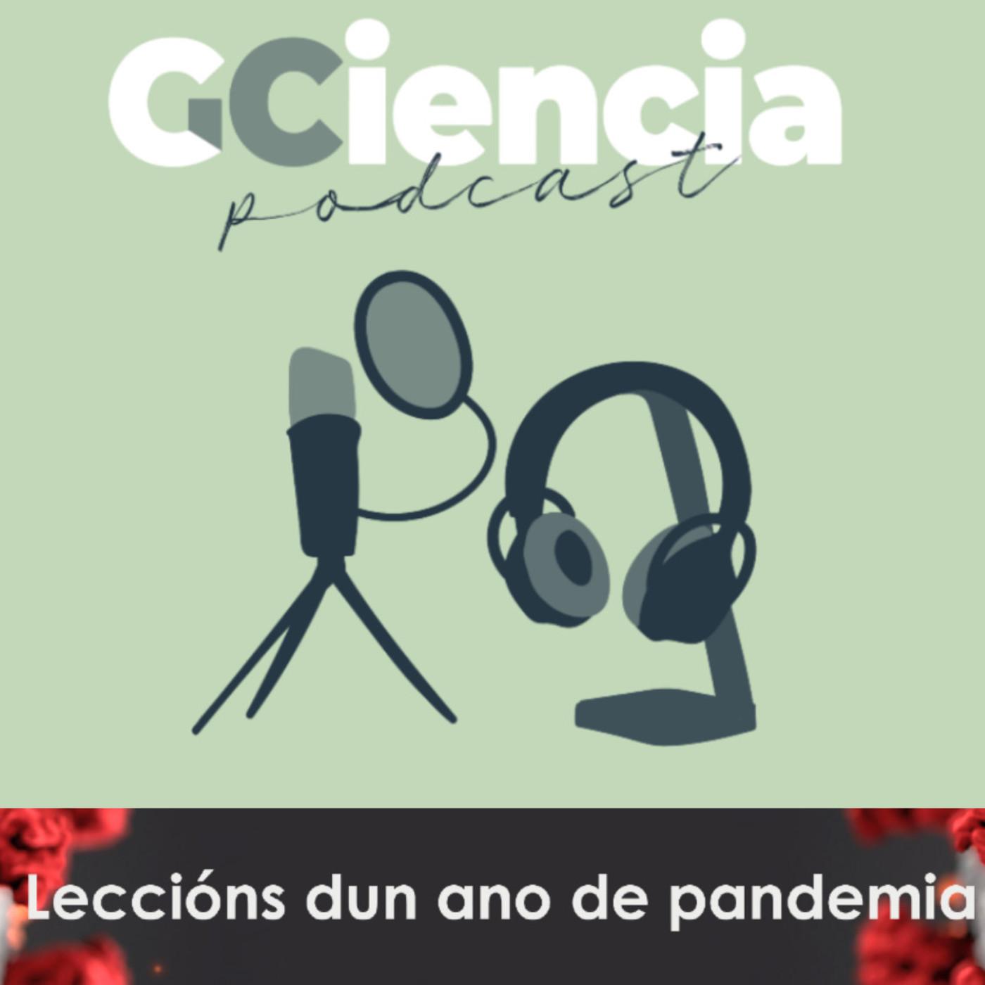 O ano da pandemia