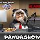 panda show - amenazan de muerte al panda por broma