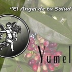 El Angel de tu Salud - YUMEL I