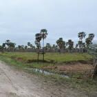 Lugares de la Argentina - PN Pilcomayo
