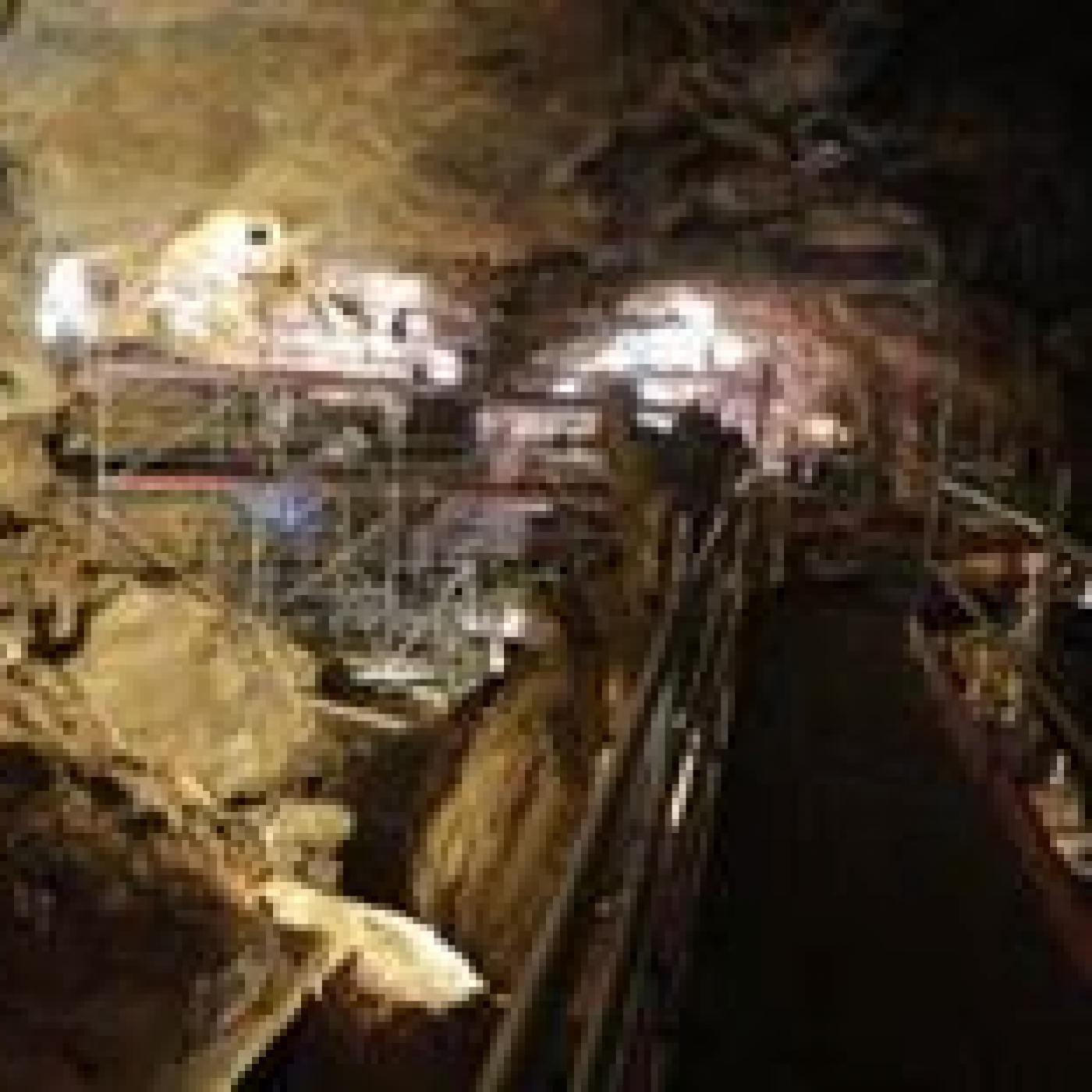 La Fibula 01 x 36 - Cueva Victoria (G Toro) y Destino ArqueoTrip