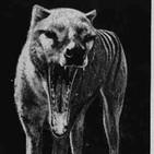Expedición al pasado T3: En busca del Tigre de Tasmania