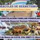 CONSTELACIÓN FAMILIAR PENDULAR, Invitada Especial Carmen Villalobos con Juan Carlos Pons López