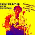 Especial hound dog taylor