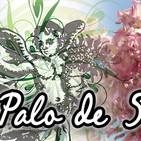 El Ángel de tu Salud - PALO DE SOL1