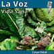 Vida Sana: Mitos y verdades del Popeye. Las proteínas en las hortalizas verdes - 03/04/20