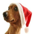 La Viñeta. Especial Navidad.Queremos tener 1.000.000 de amigos.