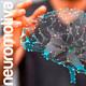 Neuróbica para el cerebro 20