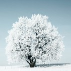 1 Hora Música Chillout Winter, Cool Lounge Selection