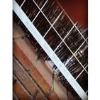 De pájaros y mendrugos de pan - 13/03/14