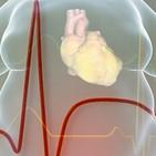 Síndrome metabólico ¿Qué es? ¿Cómo se origina? ¿Qué posibles soluciones tiene?