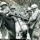Anécdotas de la Segunda Guerra Mundial en La Noche de Adolfo Arjona: Animales en la SGM