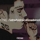 THC - Duki y Papo Freestyle