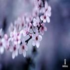 Meditación guiada profunda para la paz interior