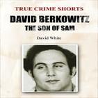 David Berkowitz, «El hijo de Sam»