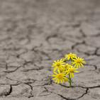 El Txoko de las Emociones: La Esperanza (I)