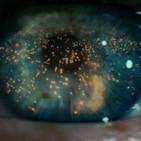 Verne y Wells ciencia ficción: 35 Aniversario de Blade Runner; los universos de Philipk K. Dick y Ridley Scott