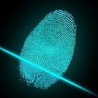 Entorno digital de las empresas y cumplimiento normativo penal