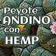 Nutribella - PEYOTE ANDINO CON HEMP