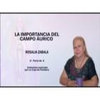 LA IMPORTANCIA DEL CAMPO ÁURICO Rosalía Zabala -- 2ª Parte de 6