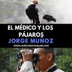 El Médico y los Pájaros