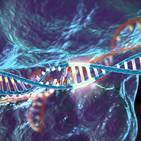 La Brújula de la Ciencia s04e34: CRISPR/Cas9, del sistema inmune de las bacterias a la edición del genoma